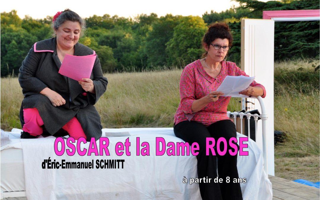 Oscar et la dame rose d'Eric Emmanuel Smitch